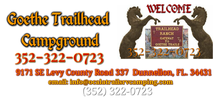 Goethe Trailhead Campground, Dunnellon Florida